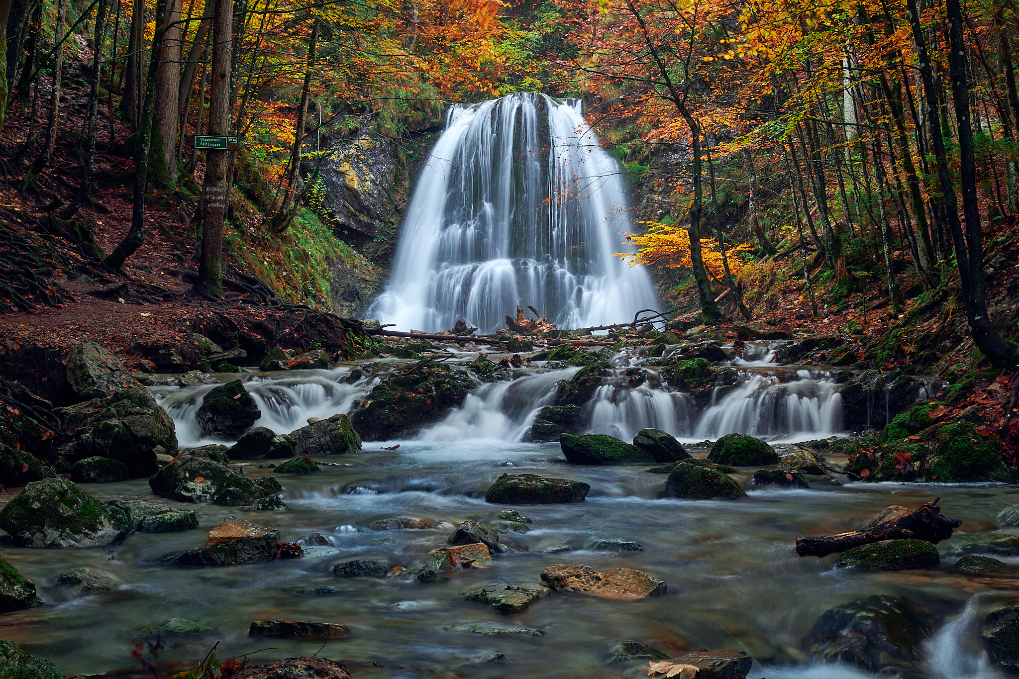 Natur & Landschaft